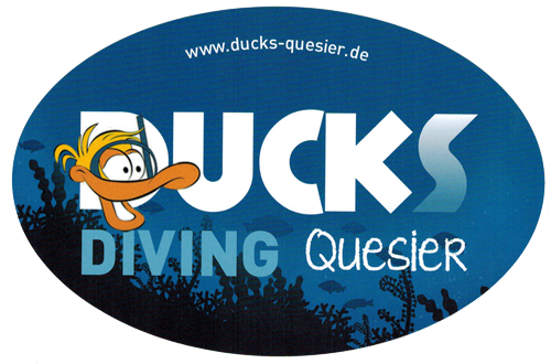 Ducks-Diving-Quesir.png